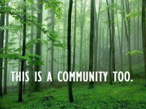 Esto también es una comunidad